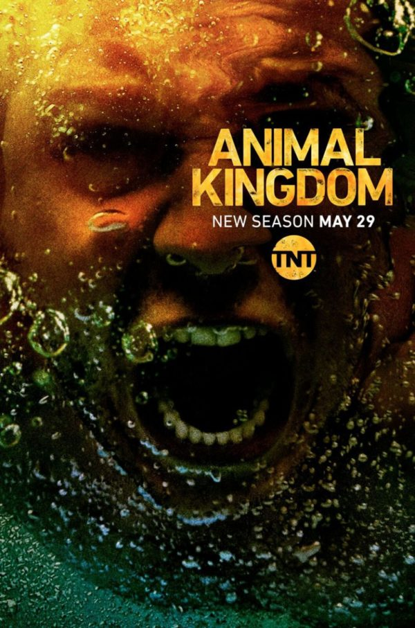 Animal Kingdom Temporada 3