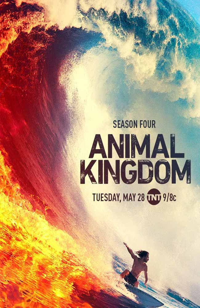 Ver o Descargar Animal Kingdom Temporada 4 Online Gratis HD