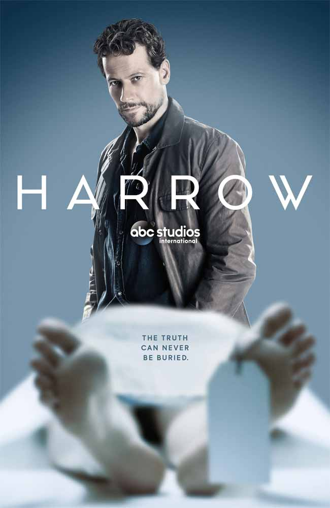 Ver Serie Harrow Online HD