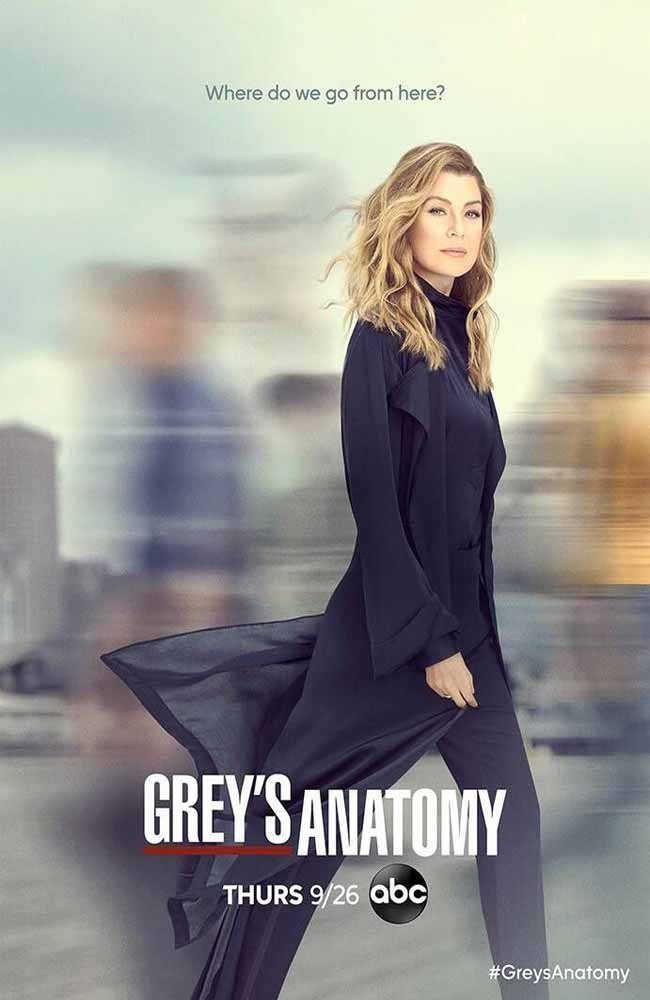 Ver Serie Greys Anatomy (Anatomia Segun Grey) Online HD